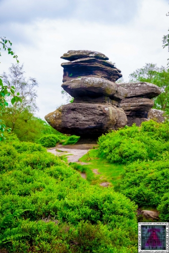Brimham Rock (30).jpg