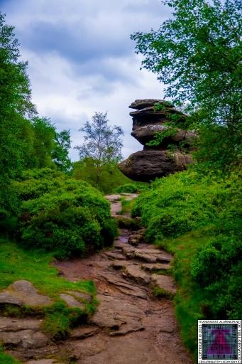 Brimham Rock (31).jpg