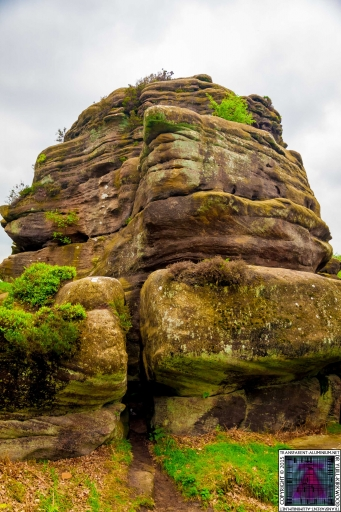 Brimham Rock (40).jpg