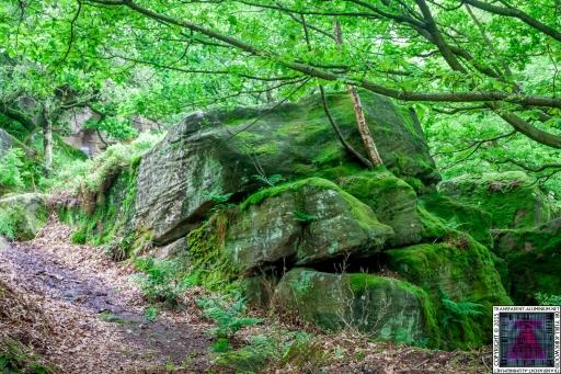 Brimham Rock (46).jpg
