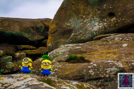 The Minions at Brimham Rock (5).jpg