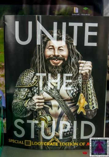 Unite The Stupid Mad Magazine.jpg