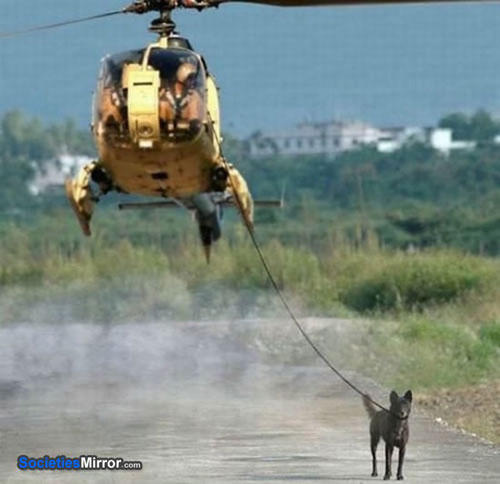 lazy-level-helicopter