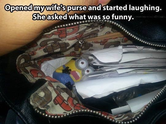 Minion in a Bag