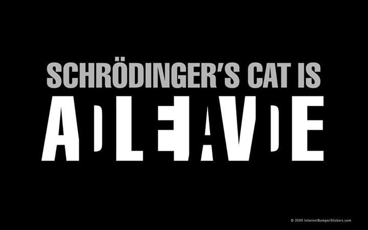 Schrodingers Cat 02
