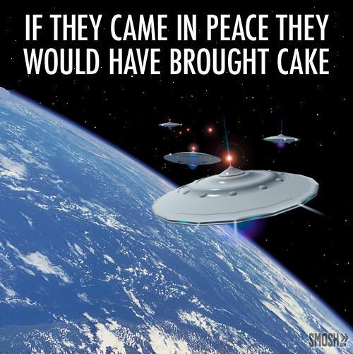 The Cake us a Lie