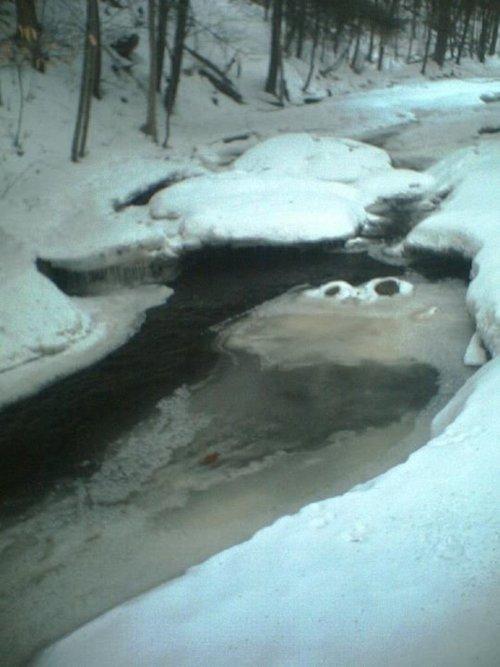 Cookie Monster Frozen River