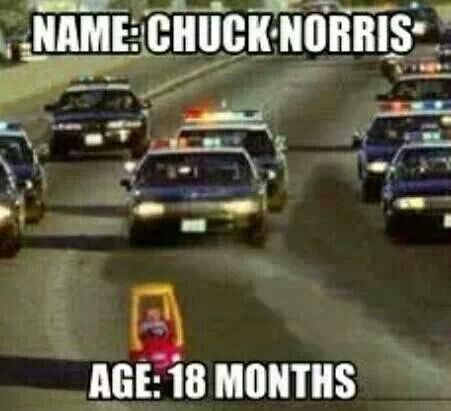 Chuck Norris Age: 18 months