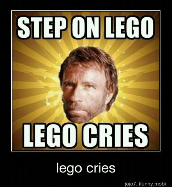 When Chuck Norris Steps on LEGO LEGO Cries