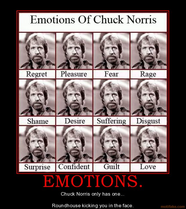 The Emotions Of Chuck Norris