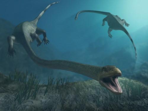 extinct-ocean-tanystropheus