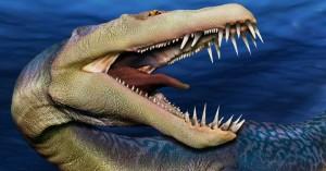 sea-creatures-fb