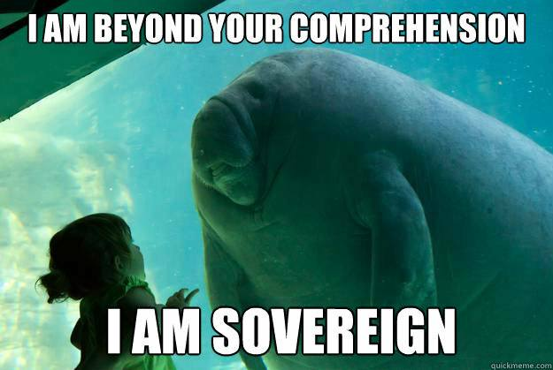 I am beyond your comprehension I am Sovereign