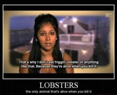 Picture Imp: Lobsters