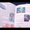 New Business Brochure Draft Print