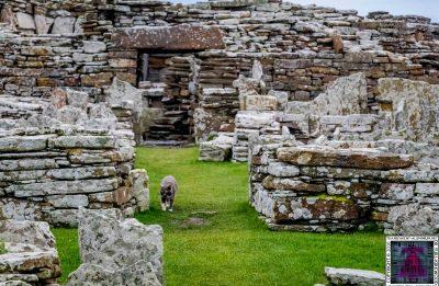 Broch of Gurness – Orkney