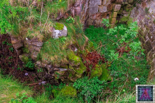 Bamburgh-Castle-21