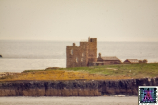 Farne-Islands-1