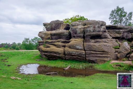 Brimham Rock (13).jpg