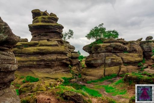 Brimham Rock (16).jpg