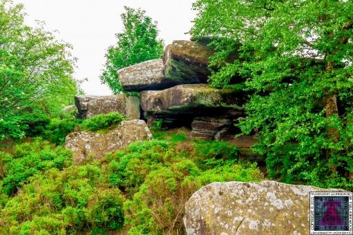 Brimham Rock (20).jpg