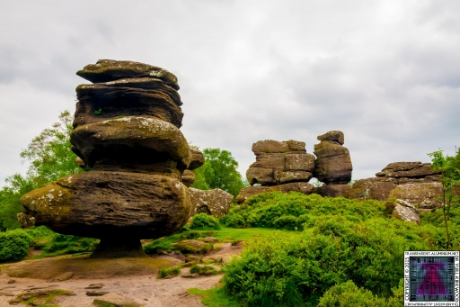 Brimham Rock (27).jpg