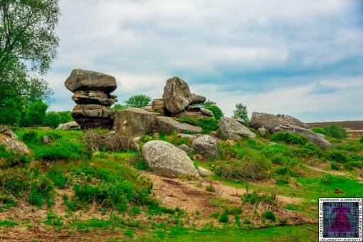 Brimham Rock (3).jpg