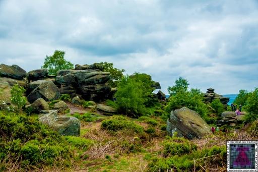 Brimham Rock (8).jpg