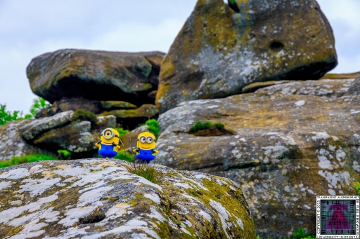 The Minions at Brimham Rock (6).jpg
