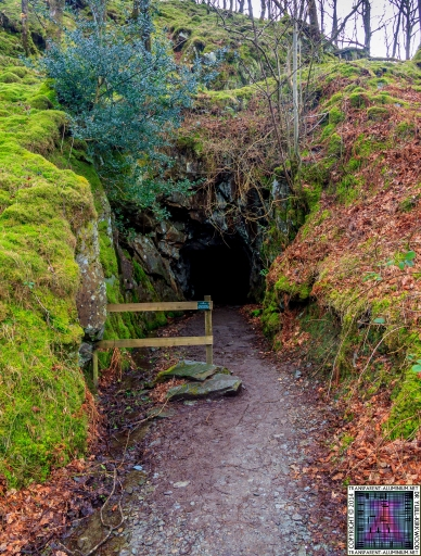Cathedral Cave 26