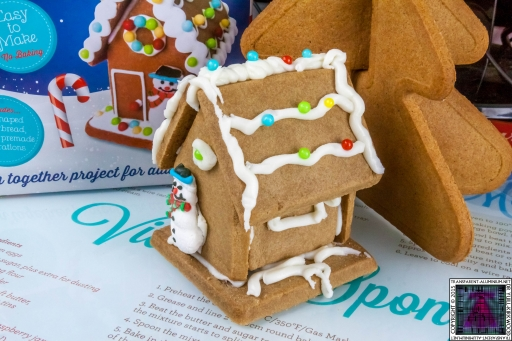 Christmas Gingerbread House - Lets Build (4)