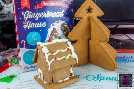 Christmas Gingerbread House - Lets Build (7)
