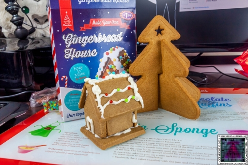 Christmas Gingerbread House - Lets Build (8)