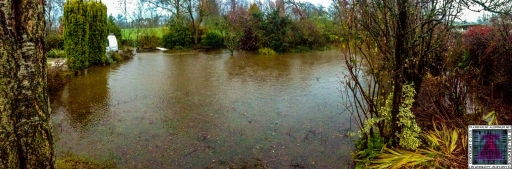 Submerged Garden - Cumbria Flooding December 2015 (2)