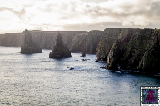 Duncansby Stacks (7)
