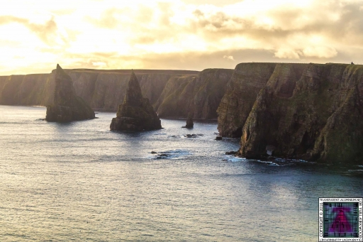 Duncansby Stacks (8)