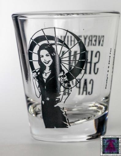 Everythings Shiny Shot Glass