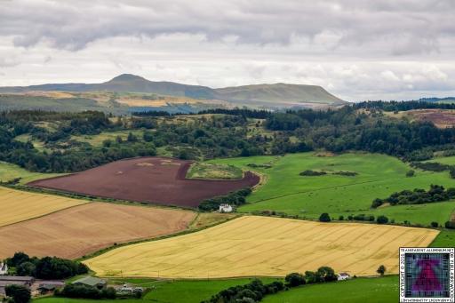 Kinnoul Hill (5)