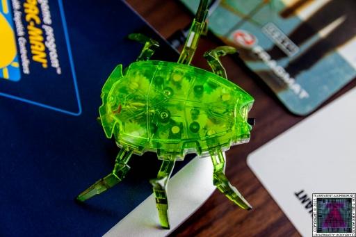 Hex Bug (1)