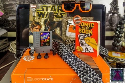 Loot Crate January 2015 Rewind (3)
