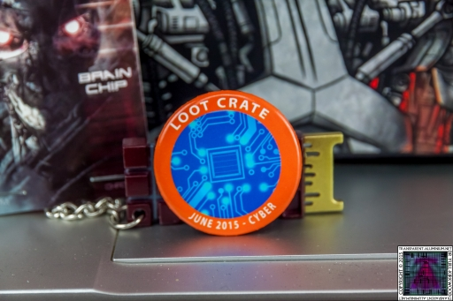 Loot Crate - June 2015 Cyber Badge.jpg