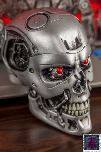Terminaror Endo Skull (1).jpg
