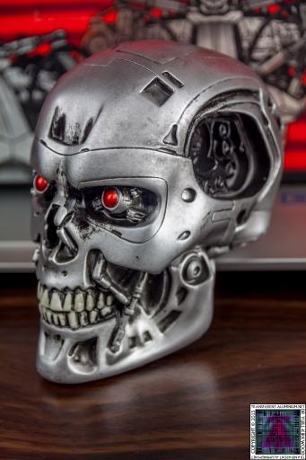 Terminaror Endo Skull (2).jpg