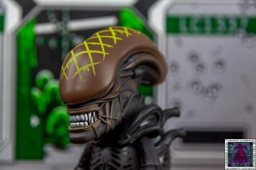 Alien-Xenomorph-3