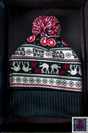 AT-AT Walker Pom Beanie (2)