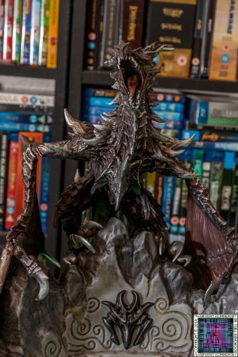 The Elder Scrolls V Skyrim Collectors Edition 10