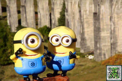the-minions-at-the-glenfinnan-viaduct-1
