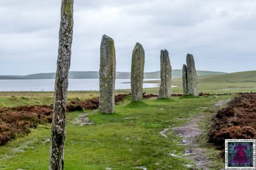 The Ring Of Brodgar (5)