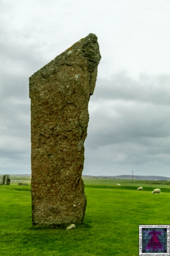 The Standing Stones Of Stenness (6)