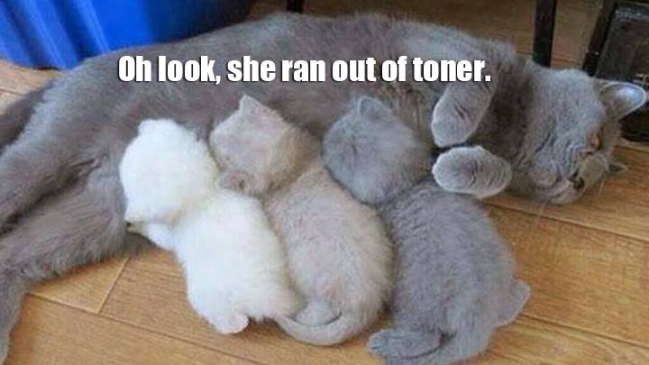 oh look, Ran out of Toner